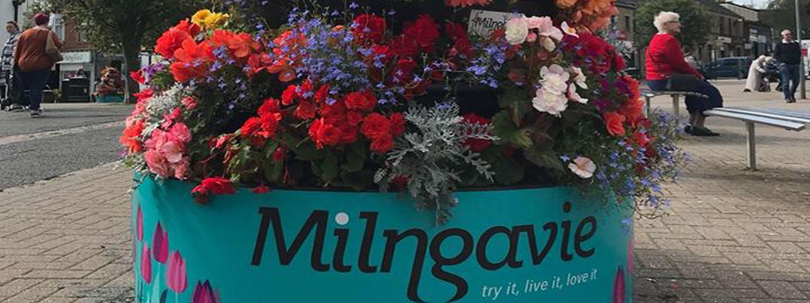 MilngavieBID.com